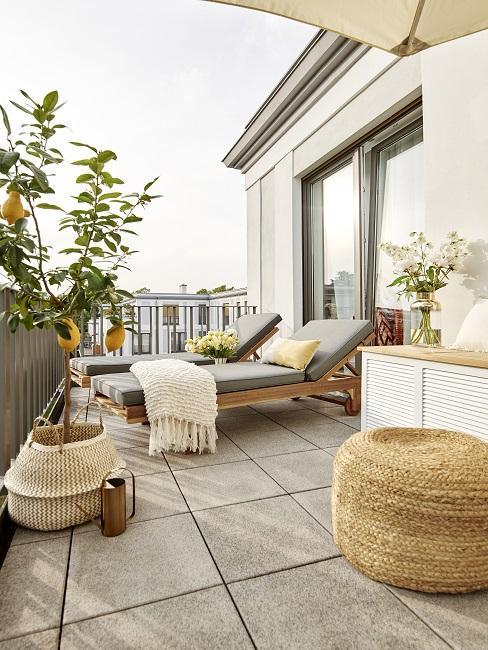 Zwei Sonnenliegen, Jutepouf und ein Zitronenbaum auf großem Balkon