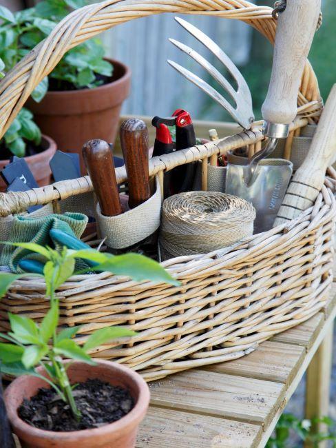 Panier avec des outils et plantes pour faire un potager