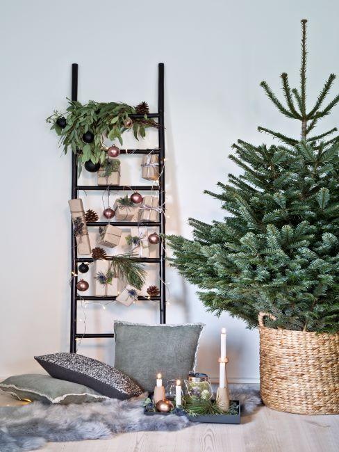 decoration de noel, echelle decorative avec des branches de sapin, des boules de noel, sapin vert naturel sans accessoires decoratifs dans un panier