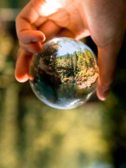 mano che tiene palla di vetro in cui si riflettono alberi verdi