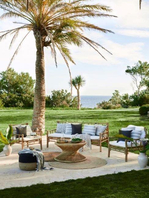 giardino grande con palma e mobili da esterno