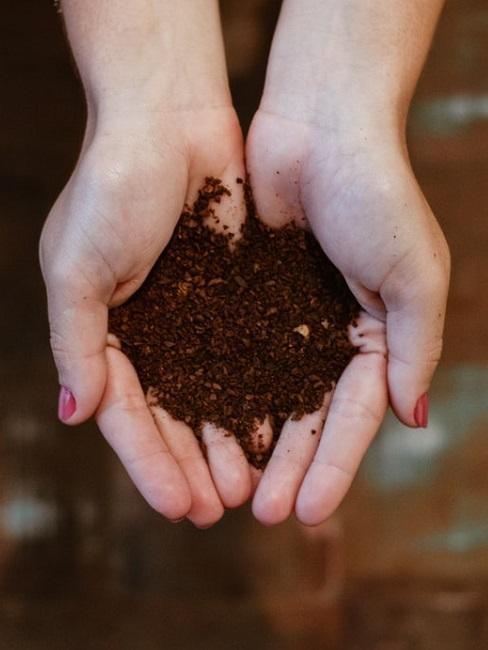 Come fare il compost