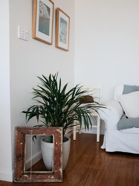 Woonkamer met groene plant in witte plantenpot en witte zitbank met grijze plaid