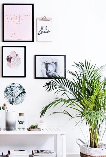 Galeria ścienna ze zdjęciami nad otwartą półką z dekoracjami i rośliną
