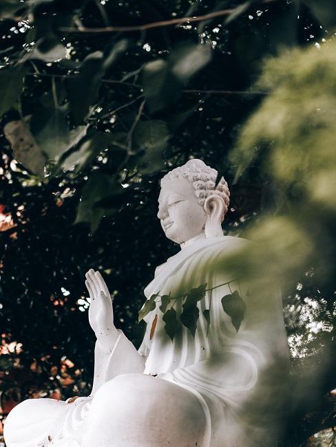 Figura Buddy w ogrodzie