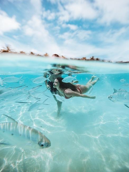 Frau schwimmt mit Fischen in hellblauem Meer