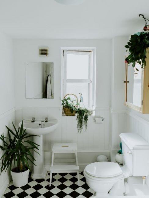 bagno moderno con pavimento a scacchi e piante