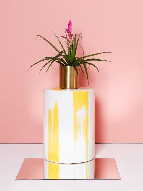 Bromelia en jarrón blanco y amarillo con fondo rosa
