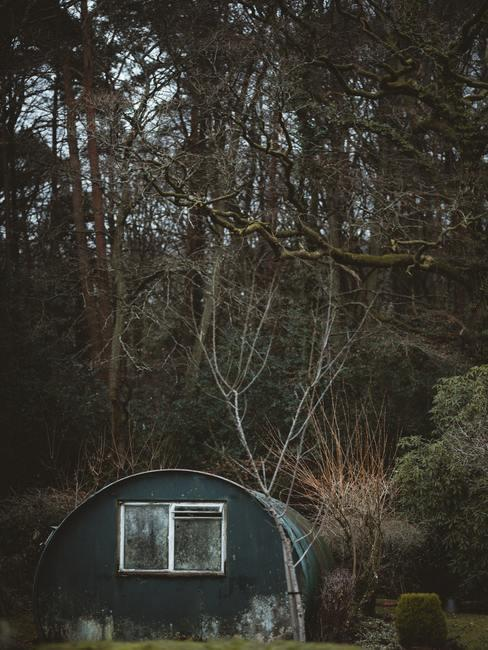 Cobertizo de jardín antiguo en un jardín delante de un bosque frondoso