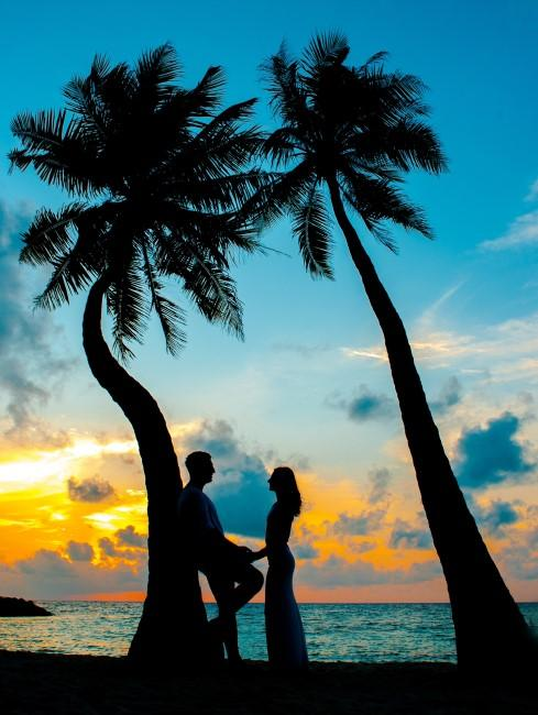 Pareja apoyada en una palmera ante una puesta de sol