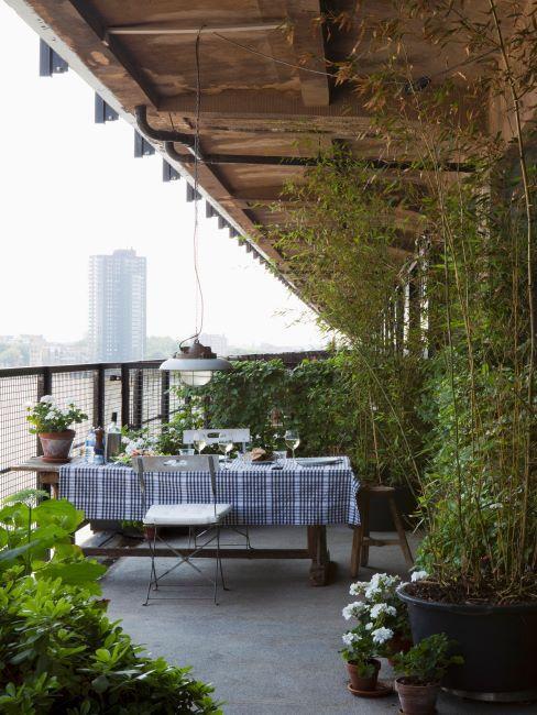 Grand balcon en ville avec plantes grimpantes, suspension industrielle, table en bois et nappe bleu a carreaux