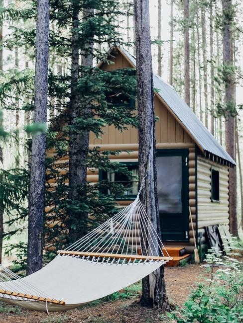 Houten tiny house met puntdak en op de voorgrond een hangmat tussen de bomen