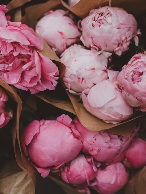pioenen als lente decoratie