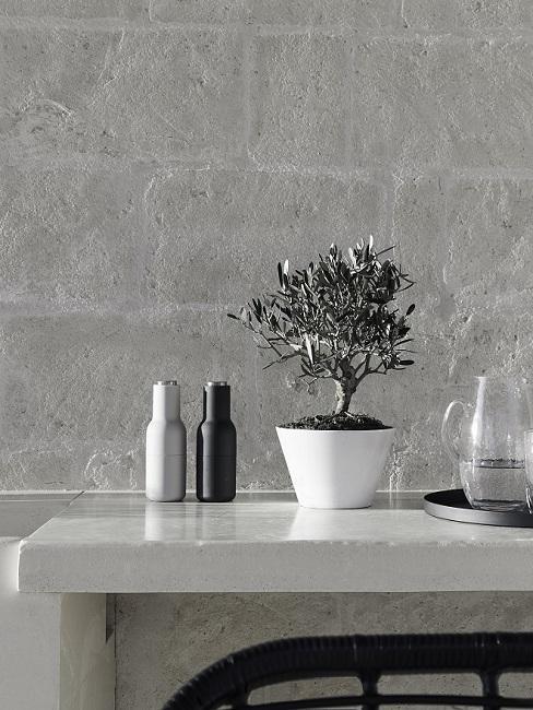 Grijs aanrechtblad tegen grijze buitenmuur met peper en zout stel en boompje in pot