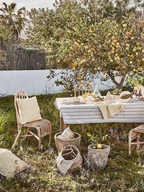 Tuin met appelboom en houten tafel