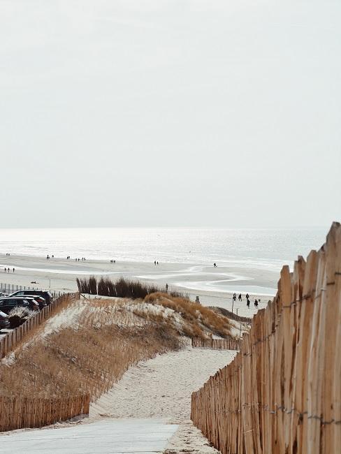duinpad naar het strand toe met de zee op de achtergrond