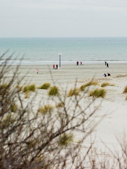 Strand en zee vanuit de duinen bekeken
