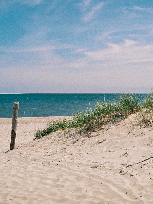 Vliebiza close-up duin en strand met baluwe zee