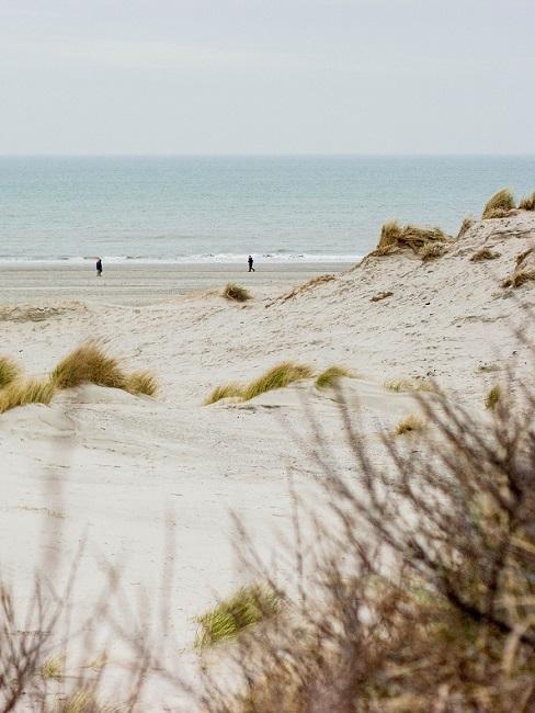 Strandvakantie Nederland close-up duinen met de zee op de achtergrond voor een bruiloft aan zee