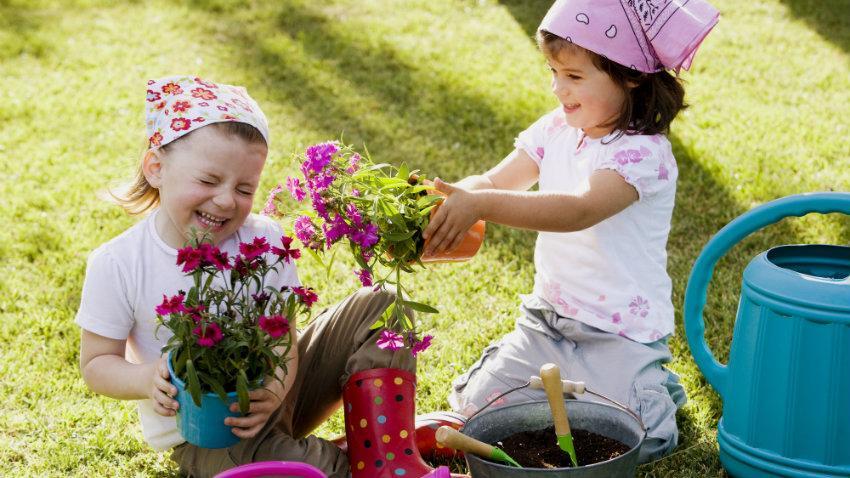 Plantas para niños