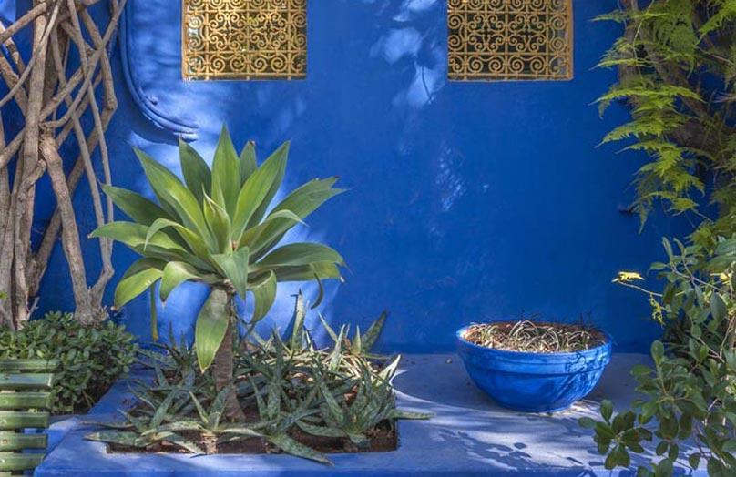 Jardin Majorelle: Der blaue Garten von Marrakesch