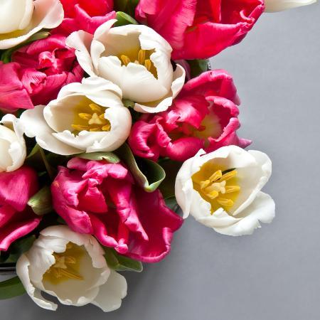 Flores poderosas