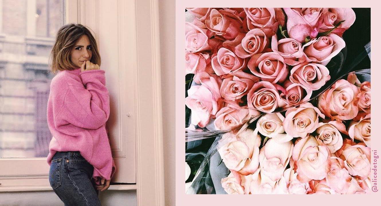 Dalani, Rosa, Casa, Colori, Decorazioni, Moda