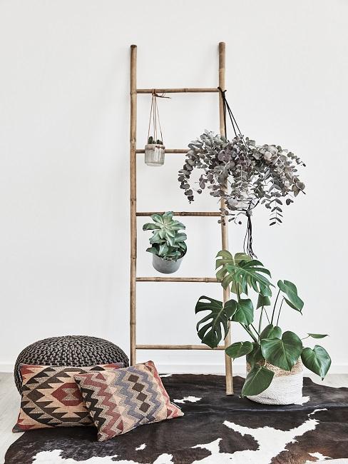 Holzleiter-Deko in Form einer Blumentreppe mit Blumenampeln und hängenden Übertöpfen.