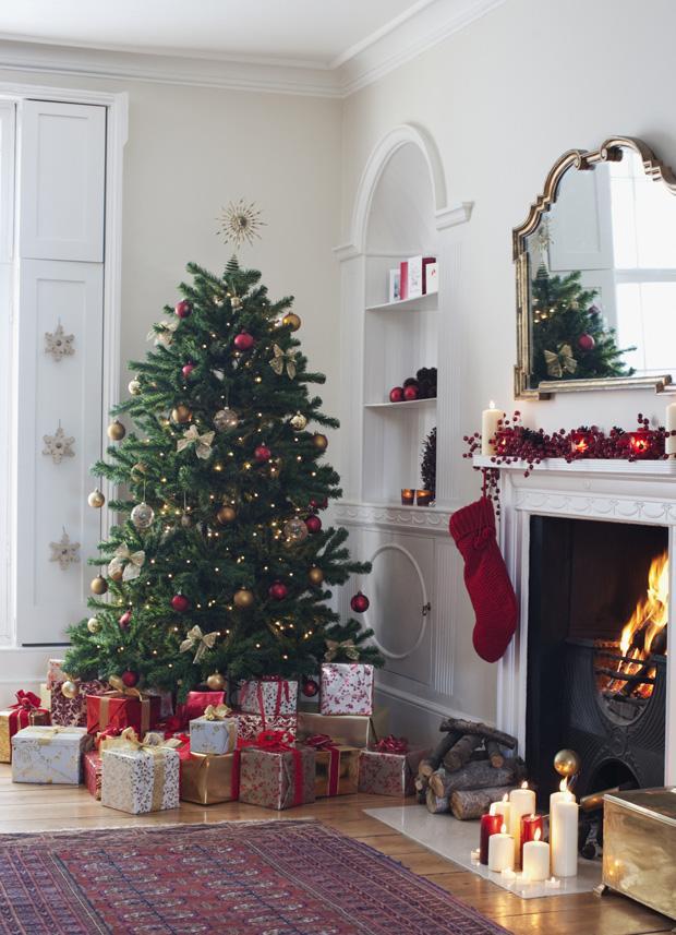 Der Weihnachtsbaum-Guide