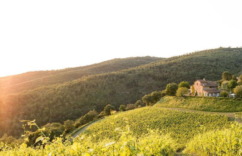 Tempo di vino - Viaggio in un casale di Toscana
