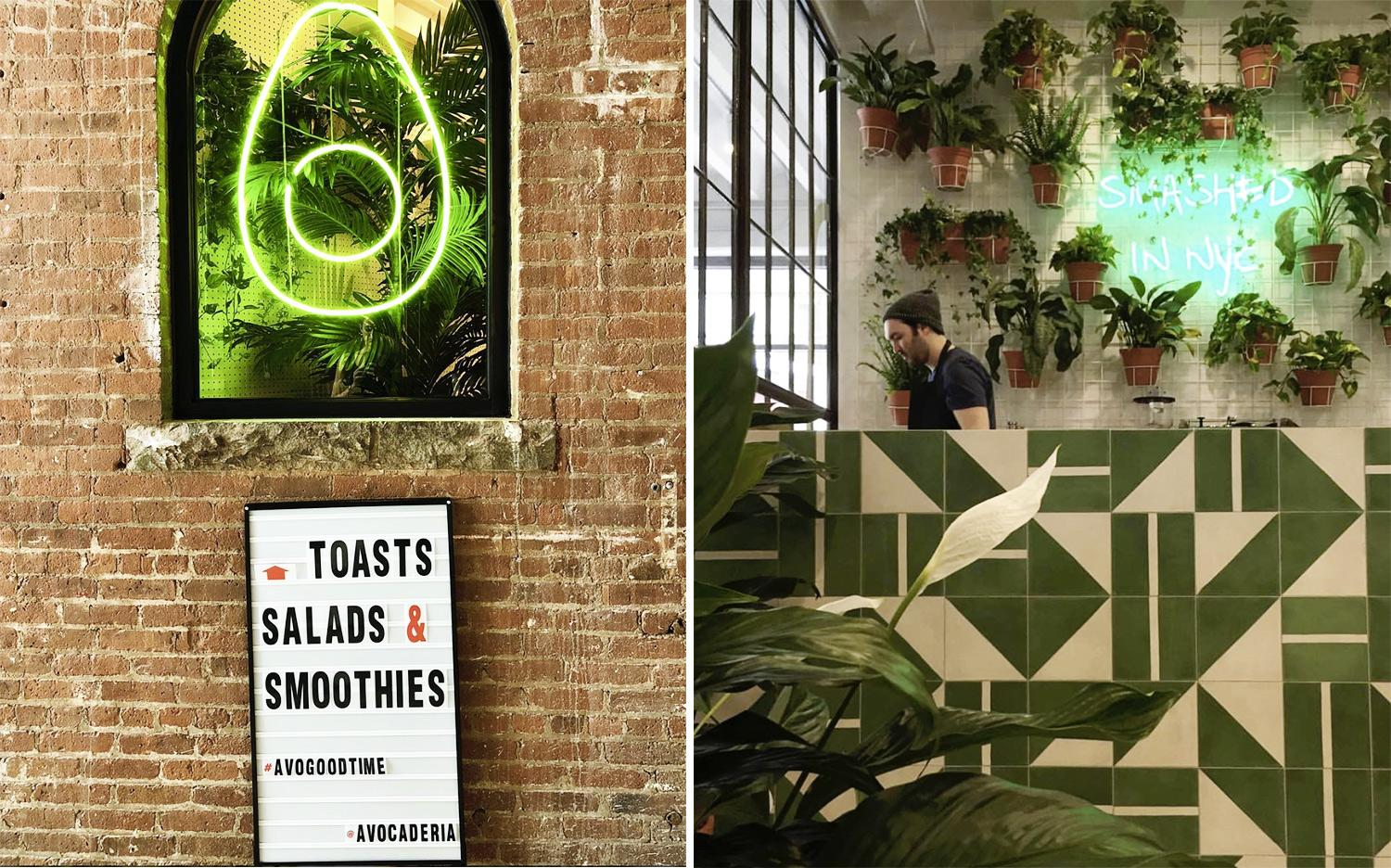 Avocaderia, New York, Avocado, Design, Stile, Ricette