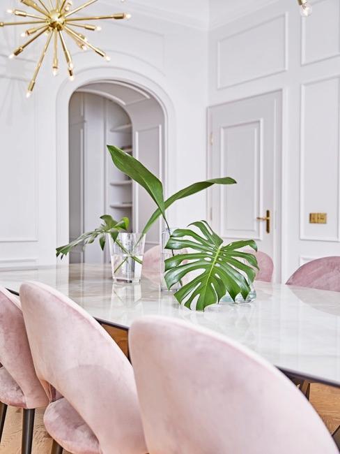 Monstera su tavolo bianco e sedie rosa