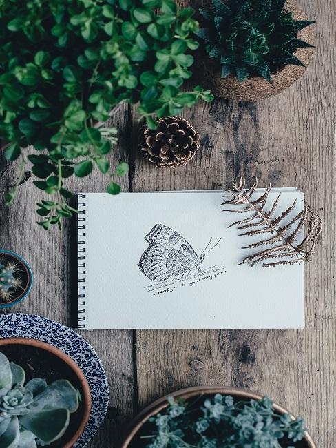 Ein Malblock mit gezeichnetem Schmetterling auf einem Holztisch, daneben viele Pflanzen