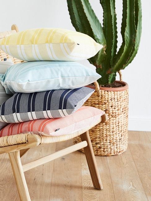 Ein Stuhl mit fünf Kissen neben einem Kaktus im Wohnzimmer