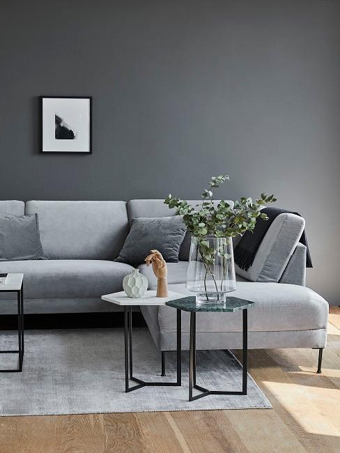 Graues Wohnzimmer mit Sofa, Beistelltischen und Pflanze