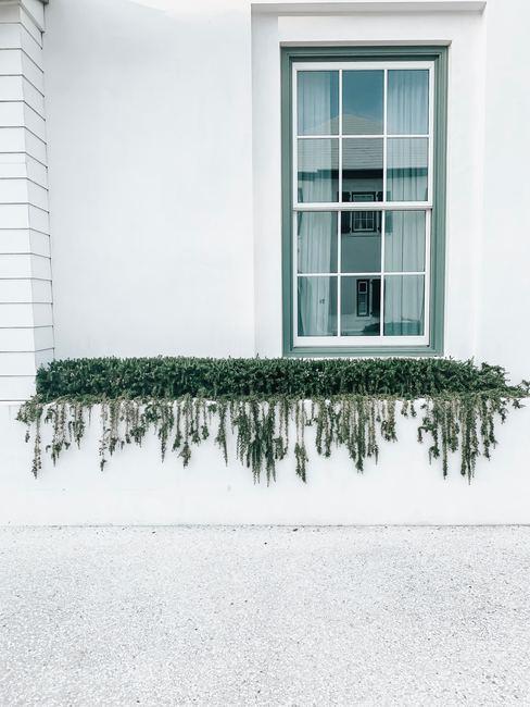Exterior de una casa decorada con musgo