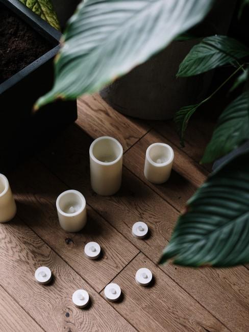 velas y plantas en parquet