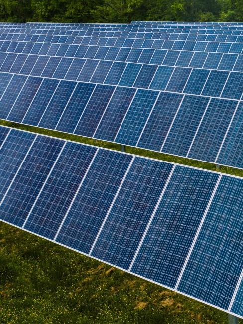 placas fotovoltáicas solares
