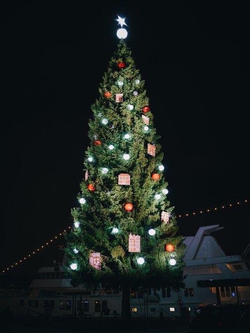 Árbol de navidad iluminado de noche