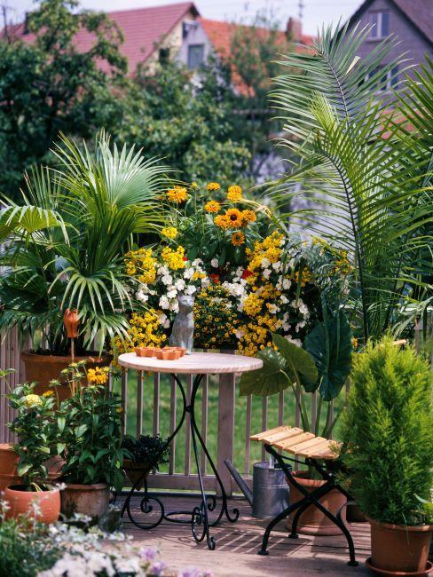 Petite terrasse avec des arbustes et fleurs en guise d'un brise-vue