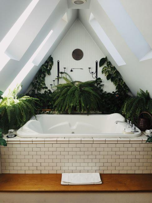 baignoire blanche avec carreaux style vintage entouree de plantes