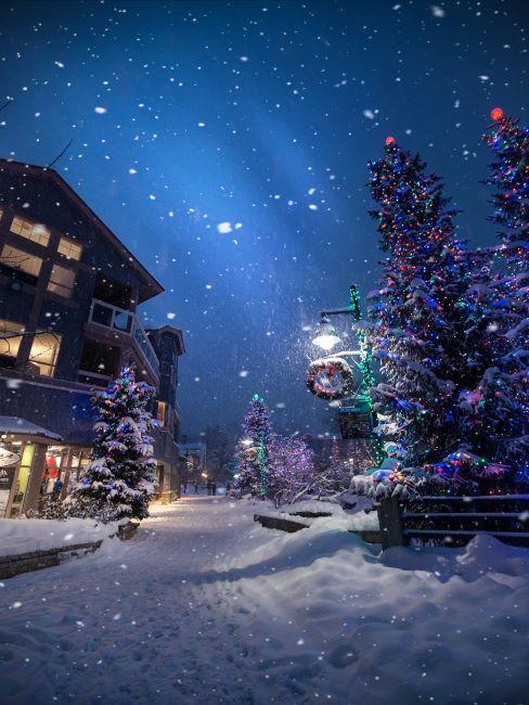 village de noel, sapin de noel, decoration exterieure noel, nuit de noel;, neige, ciel de nuit avec etoiles, ambiance de noel