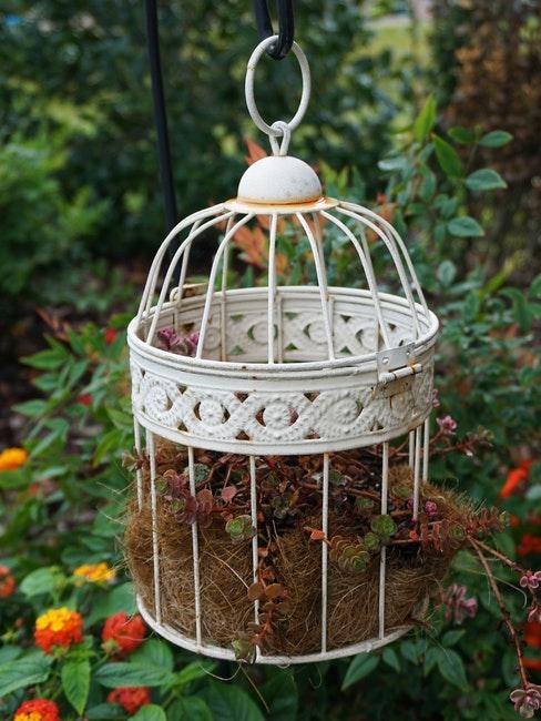 gabbie per uccelli giardino