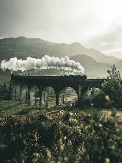 treno con colonna di fumo su un ponte in mezzo alla natura