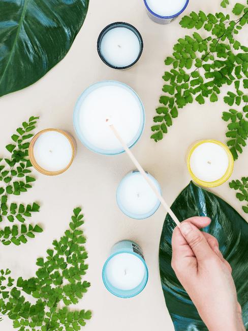 Kaarsen tussen groene planten