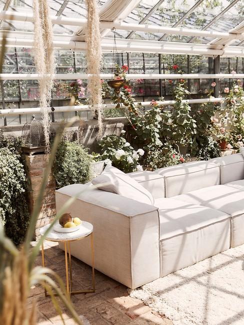 Zandkleur bank in kas met pampasgras decoratie