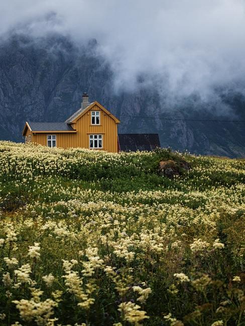 Mosterdgeel huis in velden met een berg op de achtergrond