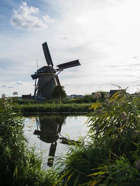 Natuurgebied Nederland zicht op windmolen en vijver