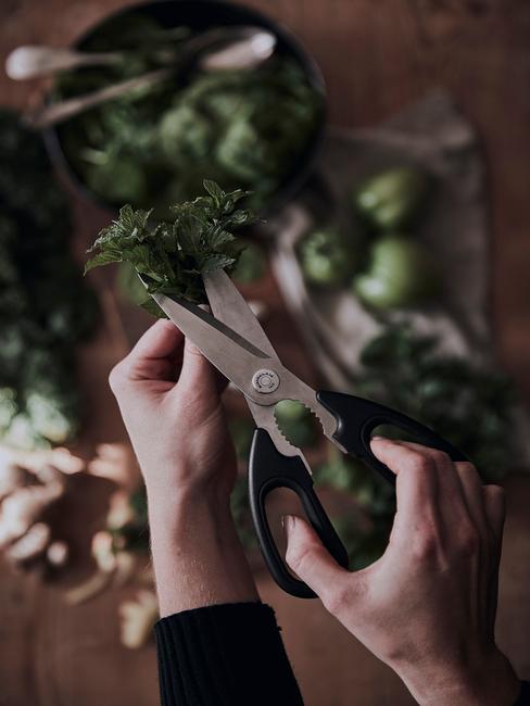 verse kruiden fijn knippen in keuken