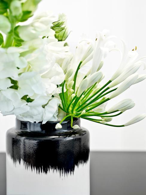 witte bloemen in vaas in de vensterbank